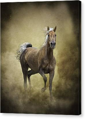 Golden One Canvas Print by Ron  McGinnis