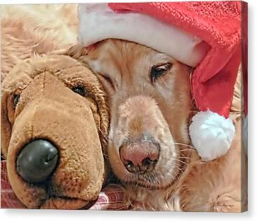 Golden Retriever Dog Santa Hat And Friend Canvas Print by Jennie Marie Schell