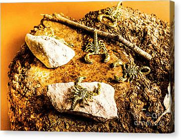 Golden Scorpion Amulets Canvas Print by Jorgo Photography - Wall Art Gallery