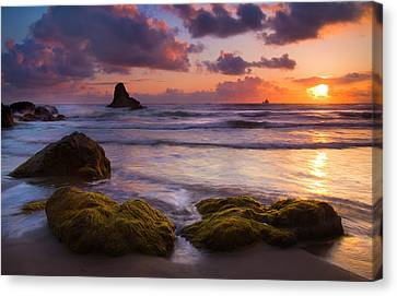 Golden Tides Canvas Print by Mike  Dawson