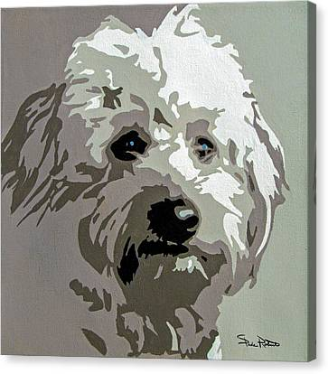 Goldendoodle Canvas Print by Slade Roberts