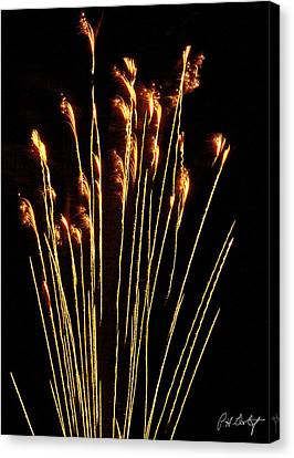 Goldenrod Canvas Print by Phill Doherty