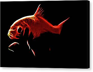 Goldfish 1 Canvas Print by Tilly Williams