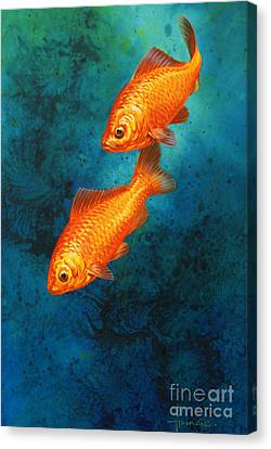 Goldfish Canvas Print by John Francis