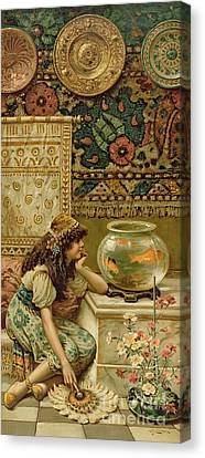Goldfish Canvas Print by William Stephen Coleman