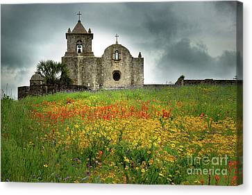 Goliad In Spring Canvas Print by Jon Holiday