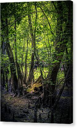 Gone And Forgotten Canvas Print by Marvin Spates
