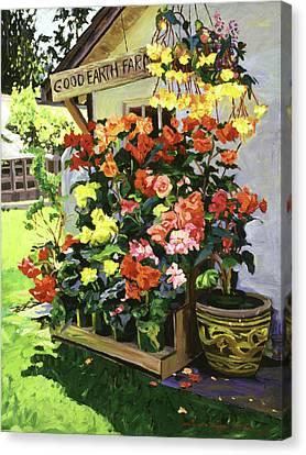 Good Earth Farm Canvas Print by David Lloyd Glover