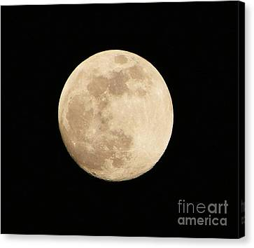 Goodnight moon pictures to print