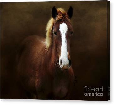 Good Stead Canvas Print by Anita Faye