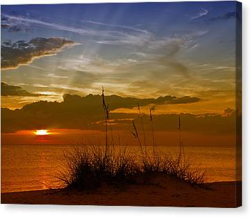 Gorgeous Sunset Canvas Print by Melanie Viola