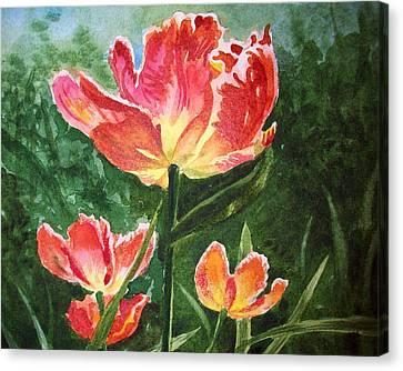 Gorgeous Tulip Garden By Irina Sztukowski Canvas Print by Irina Sztukowski