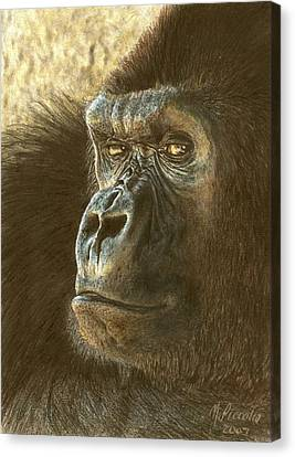 Gorilla Canvas Print by Marlene Piccolin
