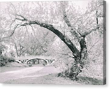Gothic Bridge 28 Canvas Print by Jessica Jenney
