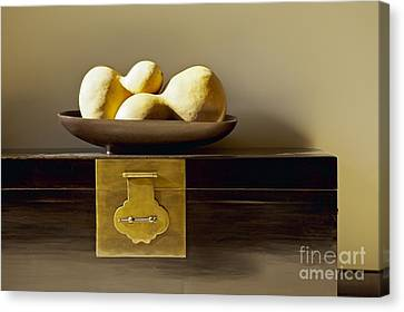 Gourds Still Life I Canvas Print by Kyle Rothenborg - Printscapes