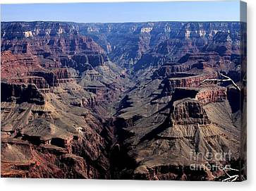 Grand Canyon 2 Canvas Print by Erica Hanel