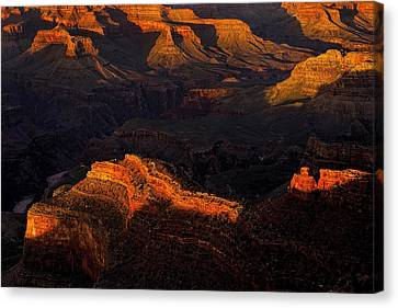 Grand Canyon Light And Shadows Canvas Print by Andrew Soundarajan