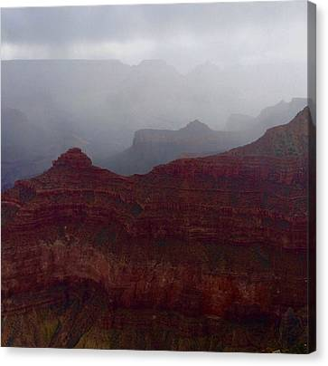 Grand Canyon Rain Canvas Print by Lisa Camilla Hale
