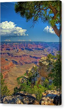 Grand Canyon Vista Canvas Print by William Wetmore