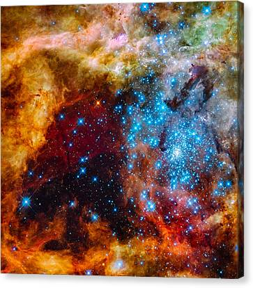 Grand Star-forming Region Canvas Print by Marco Oliveira