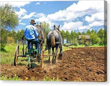 Grandpa At The Plow At Old World Wisconsin Canvas Print by Christopher Arndt