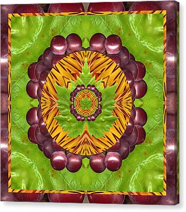 Grape Domain Canvas Print by Bell And Todd