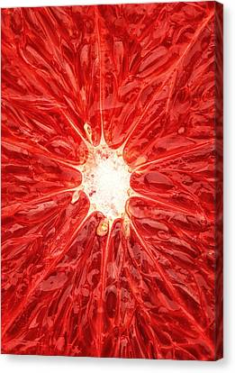 Grapefruit Close-up Canvas Print by Johan Swanepoel