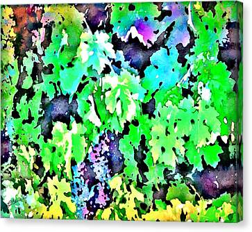 Grapes On The Vine Canvas Print by Cindy Edwards