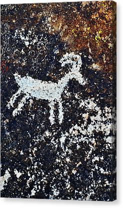 Grapevine Canyon Bighorn Sheep Petroglyph Canvas Print by Kyle Hanson