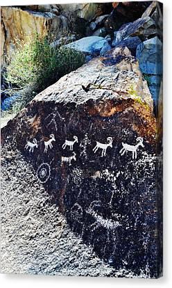 Grapevine Canyon Desert Bighorn Sheep Petroglyphs Canvas Print by Kyle Hanson