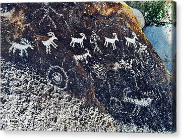 Grapevine Canyon Desert Bighorn Sheep Petroglyphs Landscape Canvas Print by Kyle Hanson
