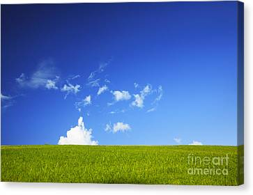 Grass Cloud Sky Canvas Print by Brandon Tabiolo - Printscapes