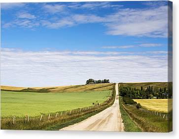 Gravel Road Climbing A Hill Canvas Print by Michael Interisano