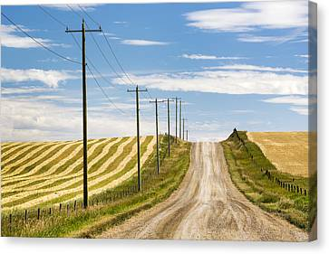 Gravel Road Climbing A Hill With Wooden Canvas Print by Michael Interisano