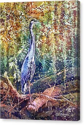 Great Blue Heron Canvas Print by Hailey E Herrera