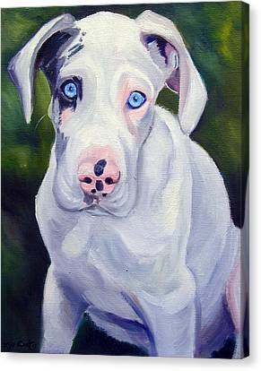Great Dane Harlequin Puppy Canvas Print by Lyn Cook