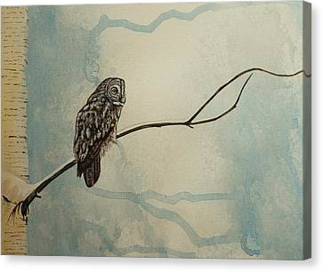 Great Gray Owl Canvas Print by Lucy Deane