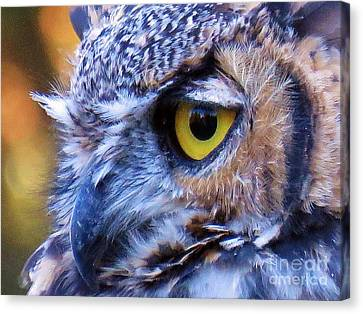 Feather Eyelashes Canvas Print by Michele Penner