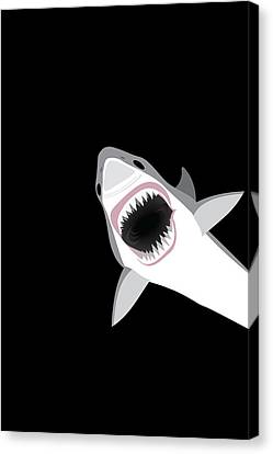 Great White Shark Canvas Print by Antique Images