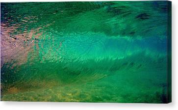Green Awakening Canvas Print by Brad Scott