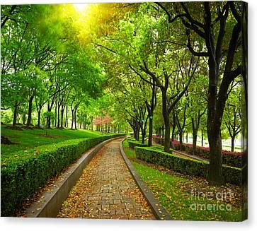Green City Park. Shanghai, China Canvas Print by Caio Caldas