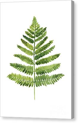Green Ferns Watercolor Poster Canvas Print by Joanna Szmerdt