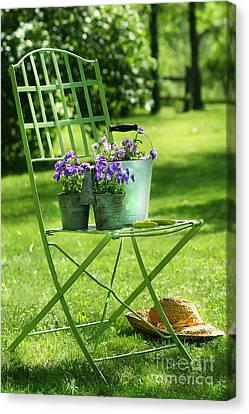 Green Garden Chair Canvas Print by Sandra Cunningham