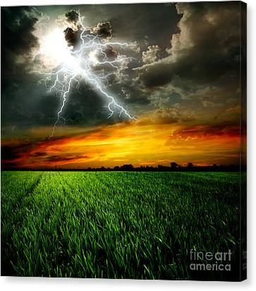 Green Grass Against A Stormy Sky Canvas Print by Unknow