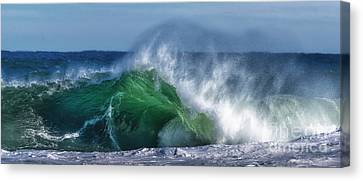 Green Monster Canvas Print by Scott Thorp