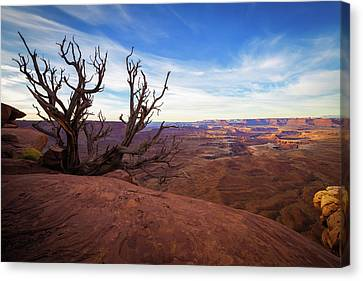 Green River Overlook Canvas Print by Edgars Erglis