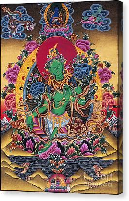 Green Tara Thangka Canvas Print by Tim Gainey