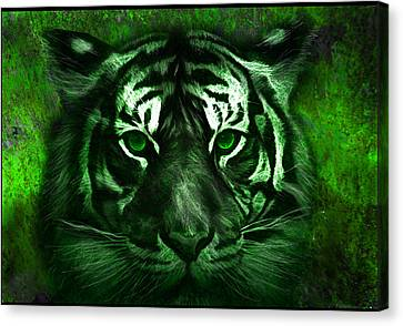 Green Tiger Canvas Print by Michael Cleere