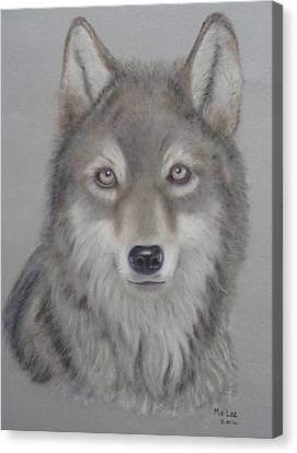 Grey Wolf Canvas Print by Mo Lee
