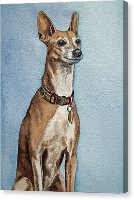 Greyhound Commission Painting By Irina Sztukowski Canvas Print by Irina Sztukowski